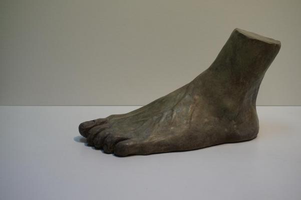 Etude pied